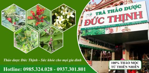 Thao Duoc