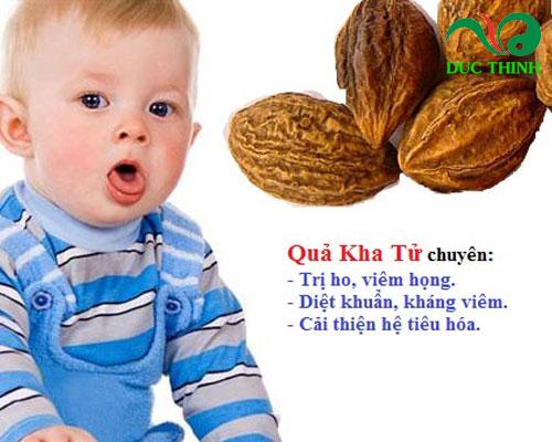 (Cách sử dụng quả kha tử trị ho cho trẻ em)