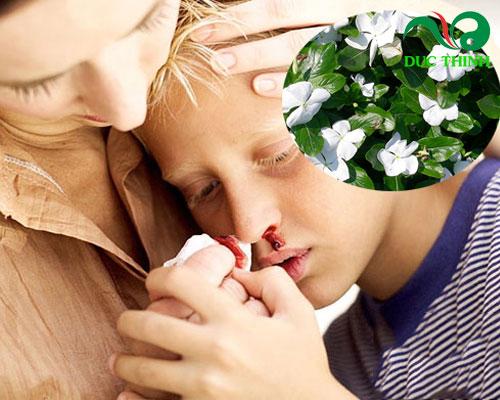 cây hoa dừa cạn chữa bệnh gì